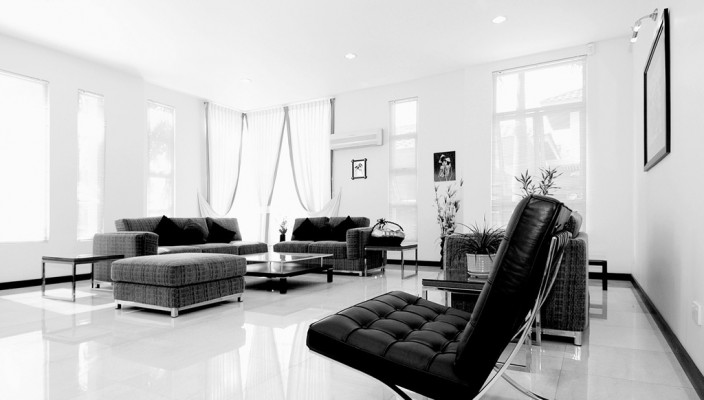Black and White perfect combination for the perfect living room