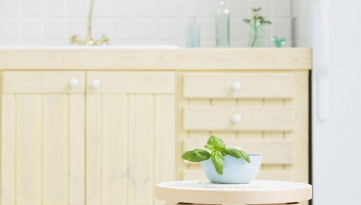 House Interior Plants in Bathroom