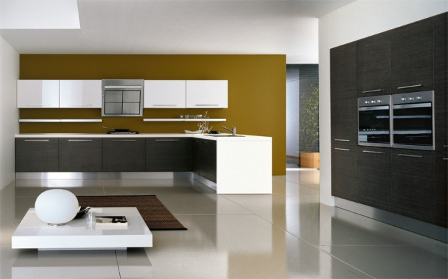 Grey oak cabinets with beige color accent wall kitchen