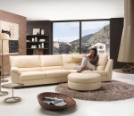 Use modern sofa for anchoring living room of yours