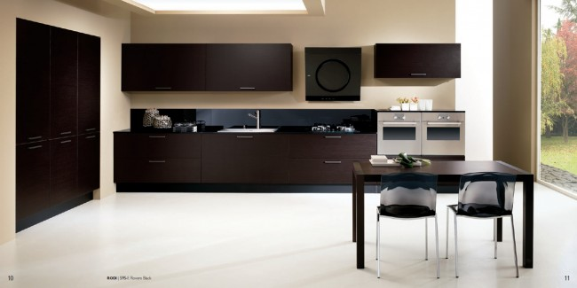 A complete modern kitchen in a black finish