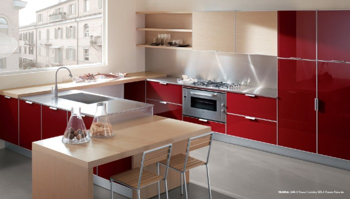 Kitchen concept with a striking red finish
