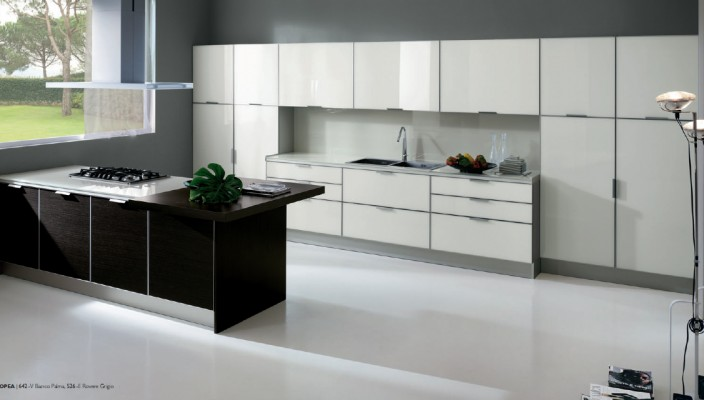 A New Kitchen Concept with Glossy White Cabinet Doors