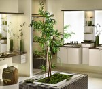 Innovative and Classic Bathroom Concept with Plants