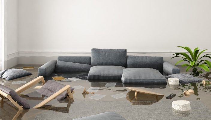 handle water damage