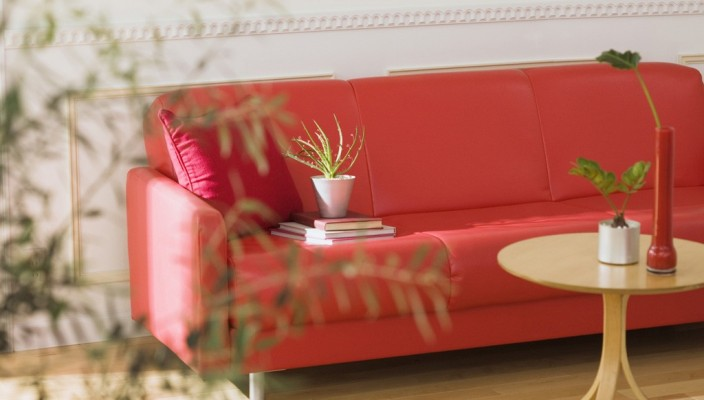 A beautiful living room with categorically selected plants