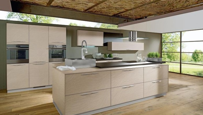 Kitchen with thatched roof