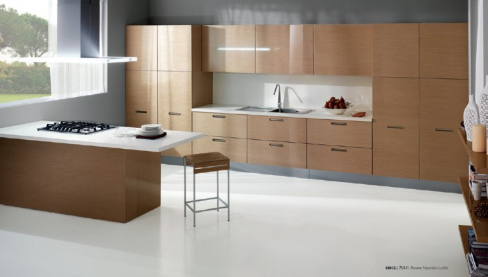 Modern Kitchen with Natural and Classy Wood Finish